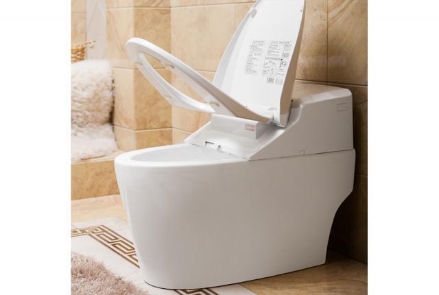 立家卫浴,座便器,RMJ6906,陶瓷,华耐家居商城